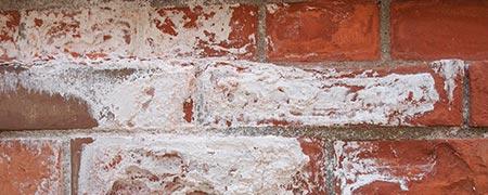 vochtproblemen in Hoorn aan buitenzijde muur